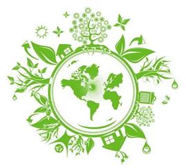 illustration charte : écologie